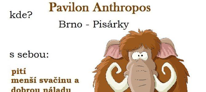 Hurá se Svišti do Anthroposu!