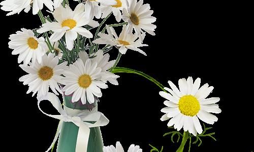 Krásný Den Matek přejeme všem maminkám